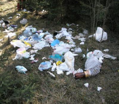 Ühekordne plastik